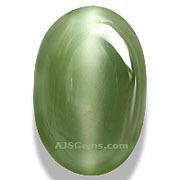 Cats-Eye Actinolite
