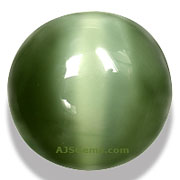 Cats Eye Actinolite